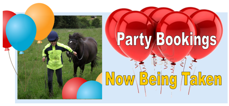 Invite a pony to your party…  Why not invite our lovely ponies along for a really special pony party, with the chance to ride and make friends with the ponies in your own back garden!
